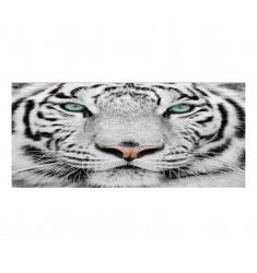 Cuadro alto brillo ANIMALES 41 -50x150cm.