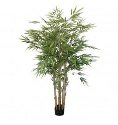 Bambú 1,50cm. con maceta