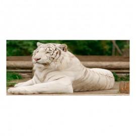 Cuadro alto brillo ANIMALES 46 -50x150cm.