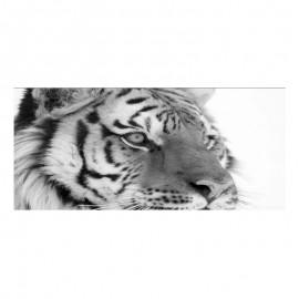 Cuadro alto brillo ANIMALES 51 -50x150cm.
