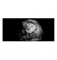 Cuadro alto brillo ANIMALES 7-50x150cm.