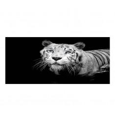 Cuadro alto brillo ANIMALES 13-50x150cm.