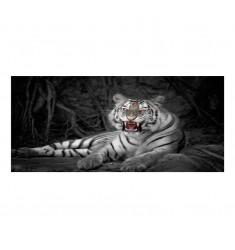 Cuadro alto brillo ANIMALES 16 -50x150cm.