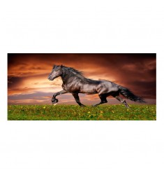 Cuadro alto brillo ANIMALES 20 -50x150cm.
