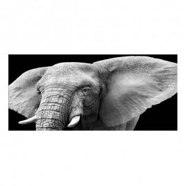 Cuadro alto brillo ANIMALES 27 -50x150cm.