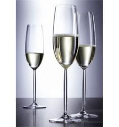 Copa champan DIVA