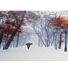 Cuadro en Blanco, Rojo y Negro en Alto Brillo